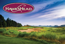 HawksHead with Logo