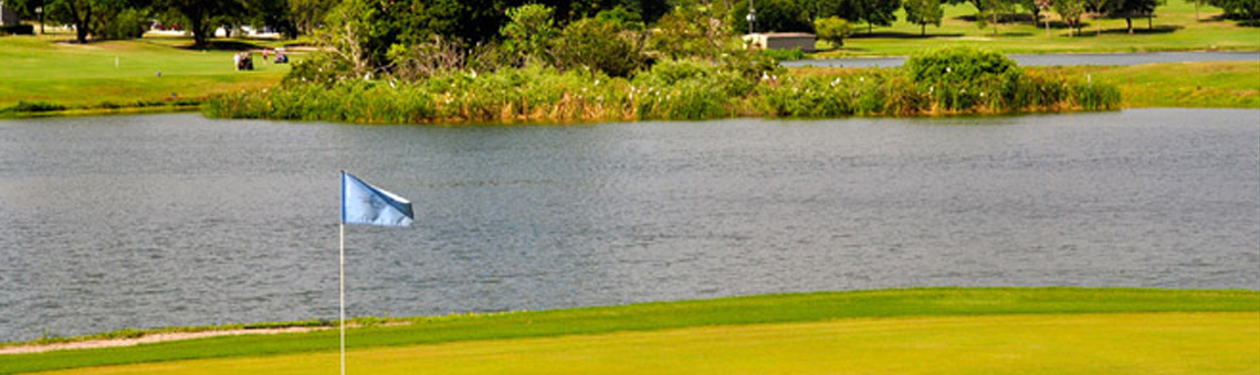 GolfVisions Offers Golfers